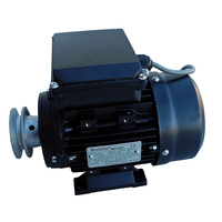 Teco Monarch Electric Motor 1/3hp