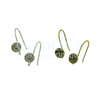 Decoration Ear Wire Pair